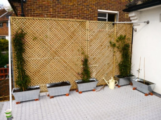DIY Trellis for a flat roof