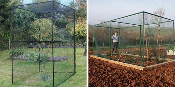 fruit cage structures